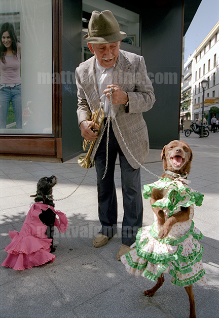 Gypsy man with dancing dogs, Seville